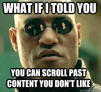 44518a1d7bc43bc9197c8cc9799c0039_what-if-i-told-you-you-can-scroll-past-content-you-dont-like-scroll-past-meme_334-302