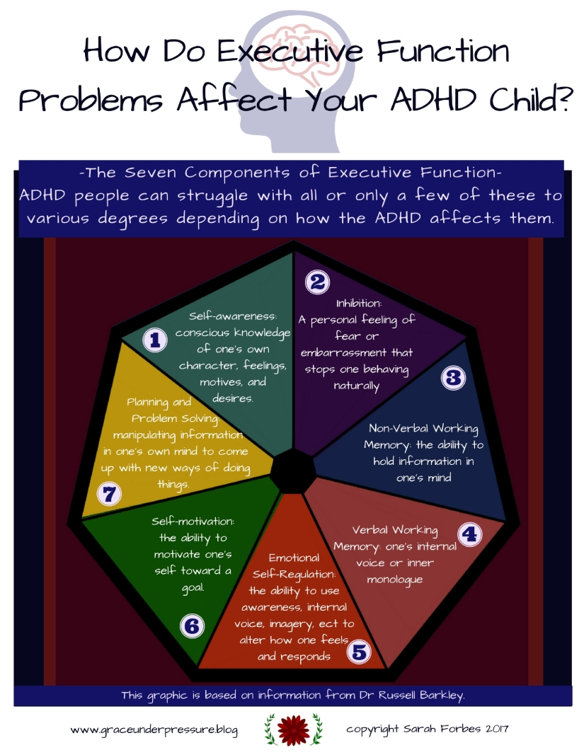 How Do Executive Function Problems Affect my ADHD Child